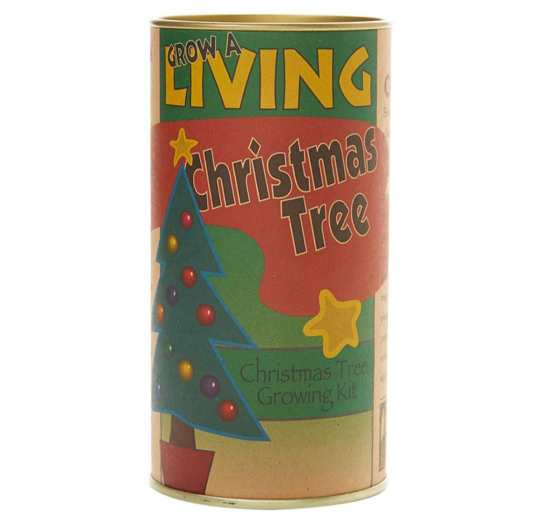Living Christmas Tree Seed Grow Kit Grand Fir