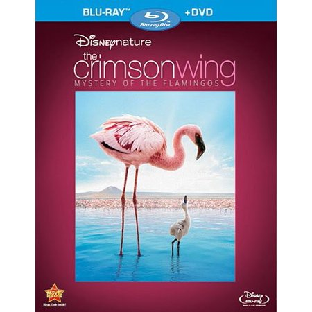 Disney's The Crimson Wing: Mystery of the Flamingos (Blu-ray + DVD) - The Flamingo Shop