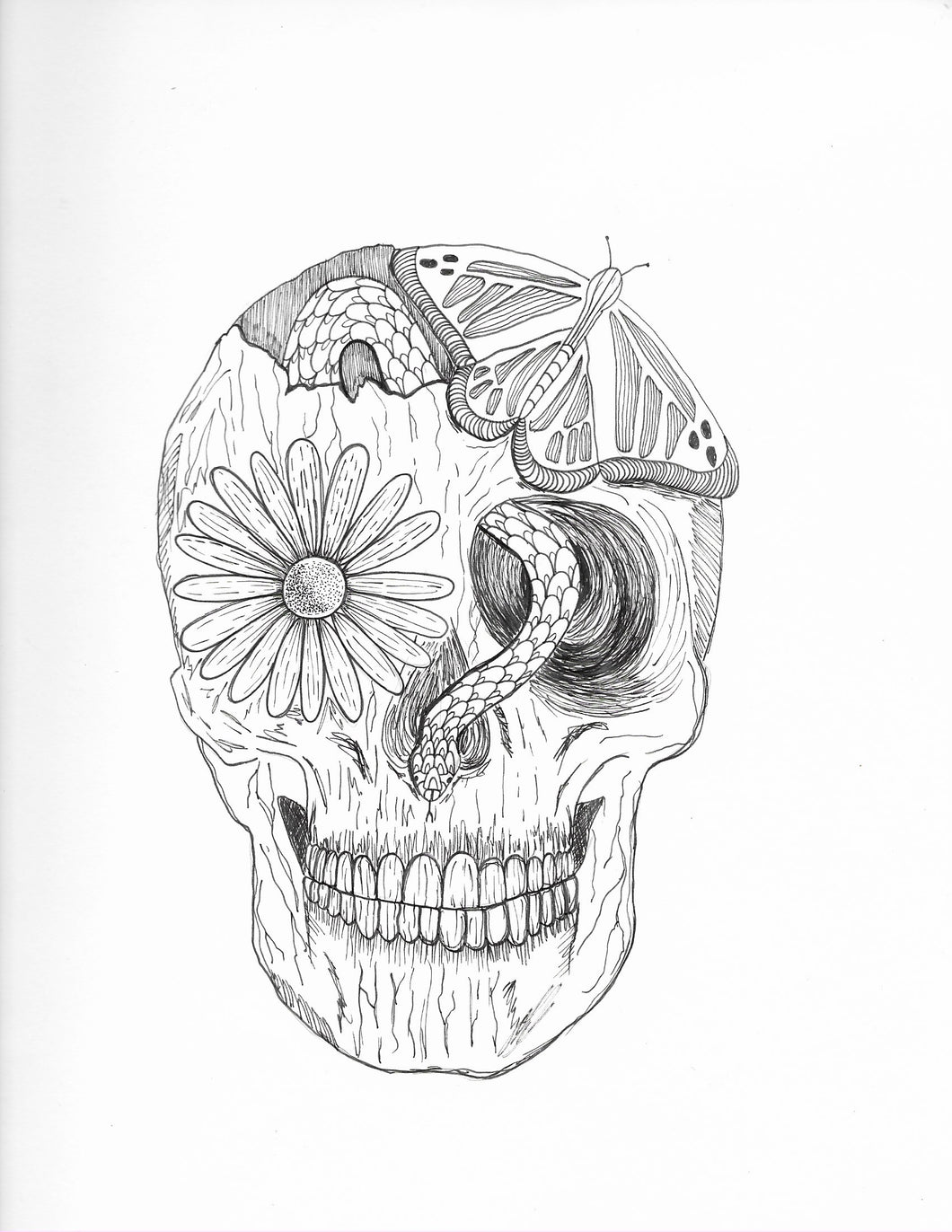 Skull of Nature (Original)