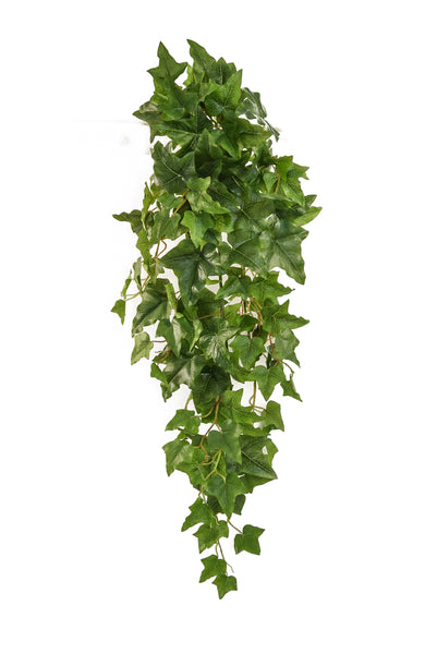 90CM TRAILING ENGLISH IVY