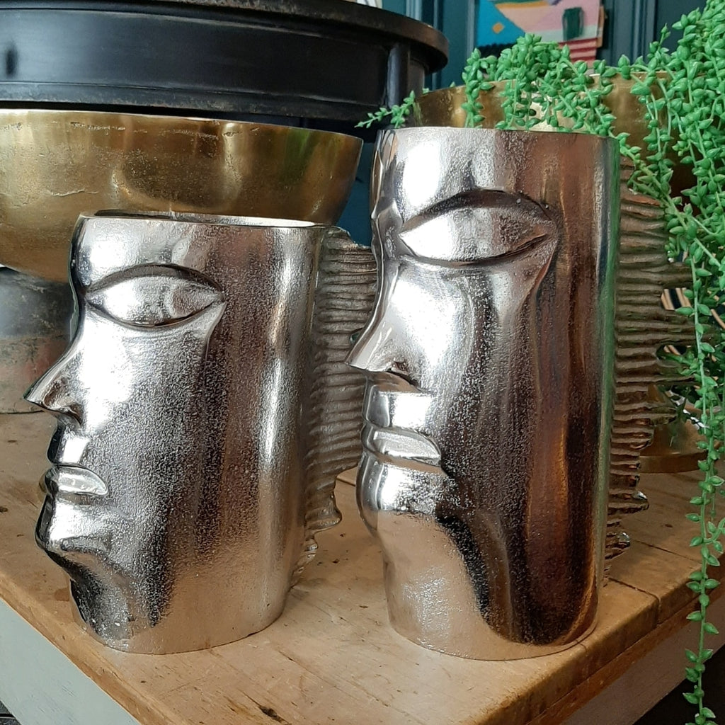 Silver Head Fire Mane Planter Large