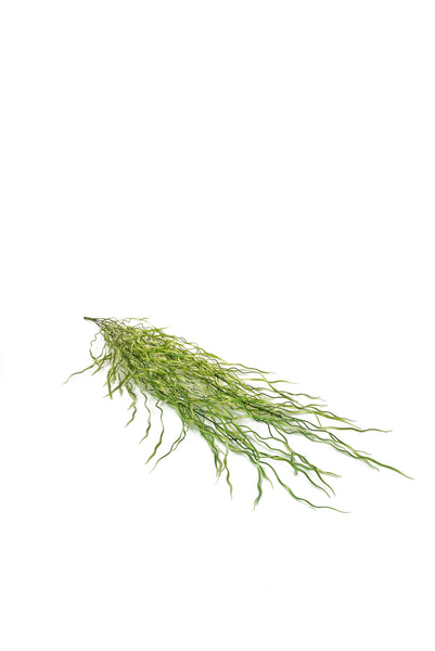 60CM AIR GRASS HANGING STEM
