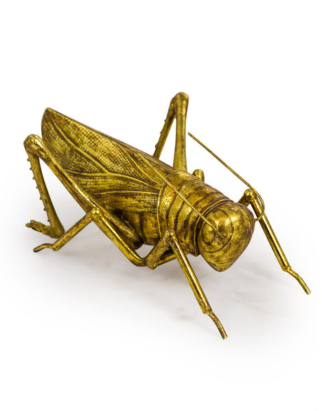 Extra Large Gold Grasshopper Storage Box