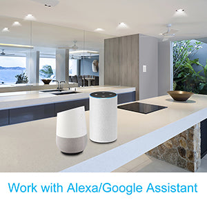 Smart Switch For Alexa Google Home