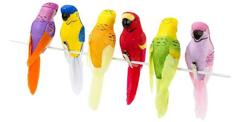 Carnival Fiesta Tropical Birds - Pack of 6