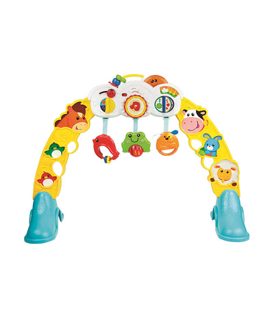 winfun 3-in-1 barnyard pals play gym