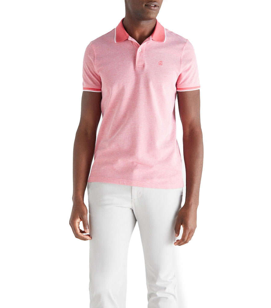 Men Knitted Polo Pink