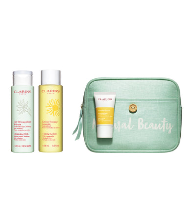 clarins perfect cleansing set for normal to dry skin
