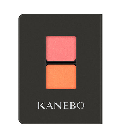 Kanebo Eye Color Duo 01