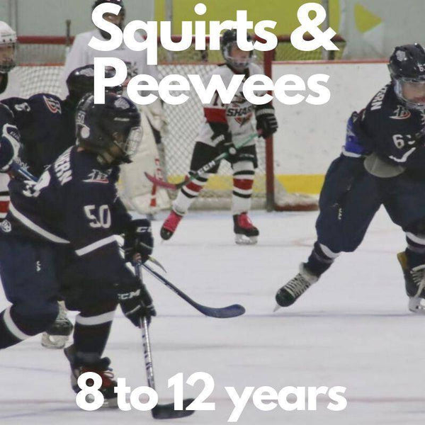 Power Play Box - Squirts & PeeWee (9-12) - Sports Box Co