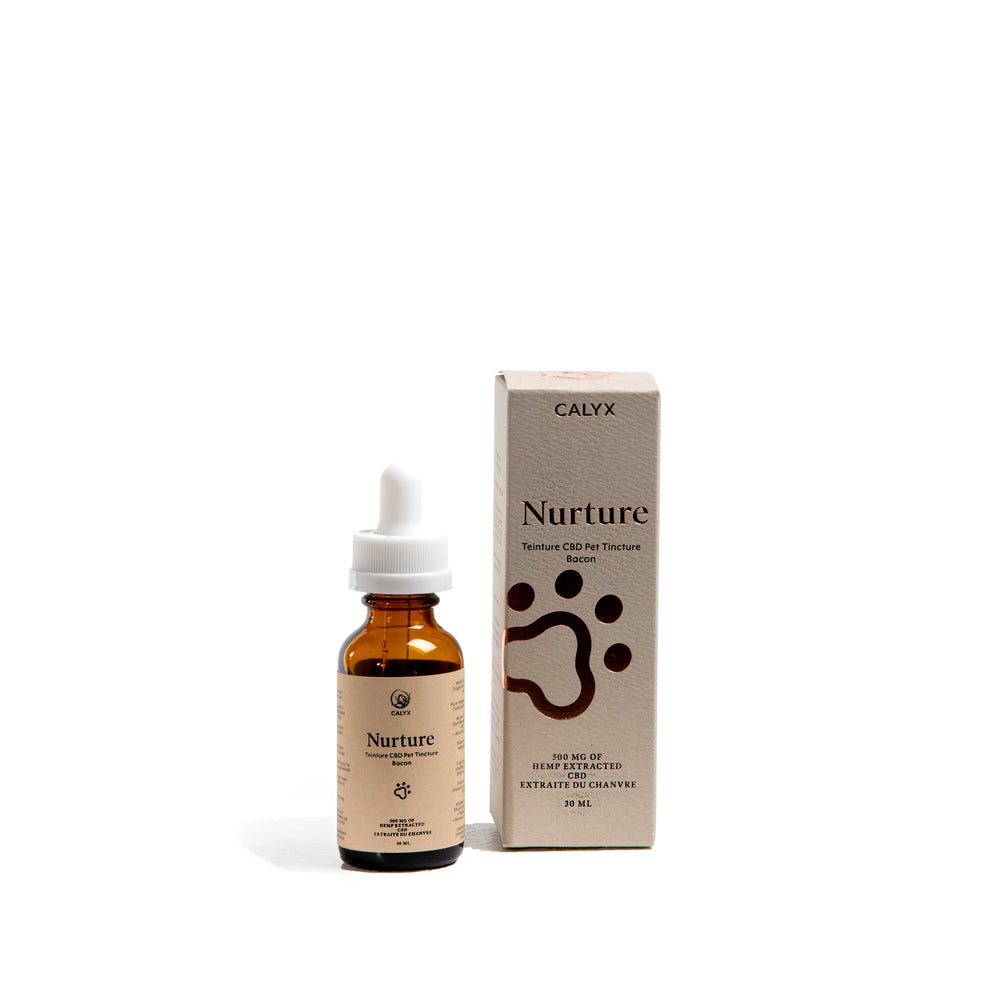 Nurture 30ml 500mg Bacon Flavored Pet Tincture
