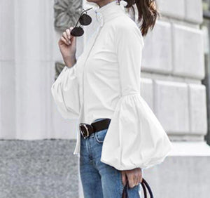 Fashion Long Lantern Sleeve Top