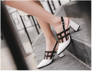 Fashion Pointed Toe Shoes