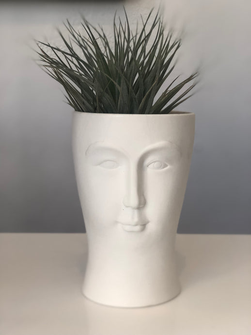 Edward Planter Head