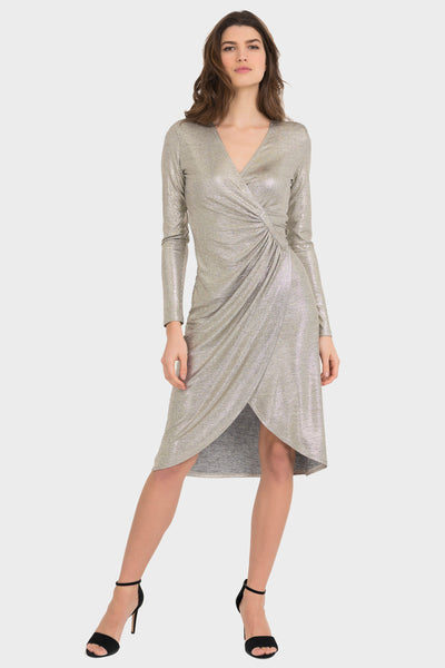 Shimmery Shaped Dress