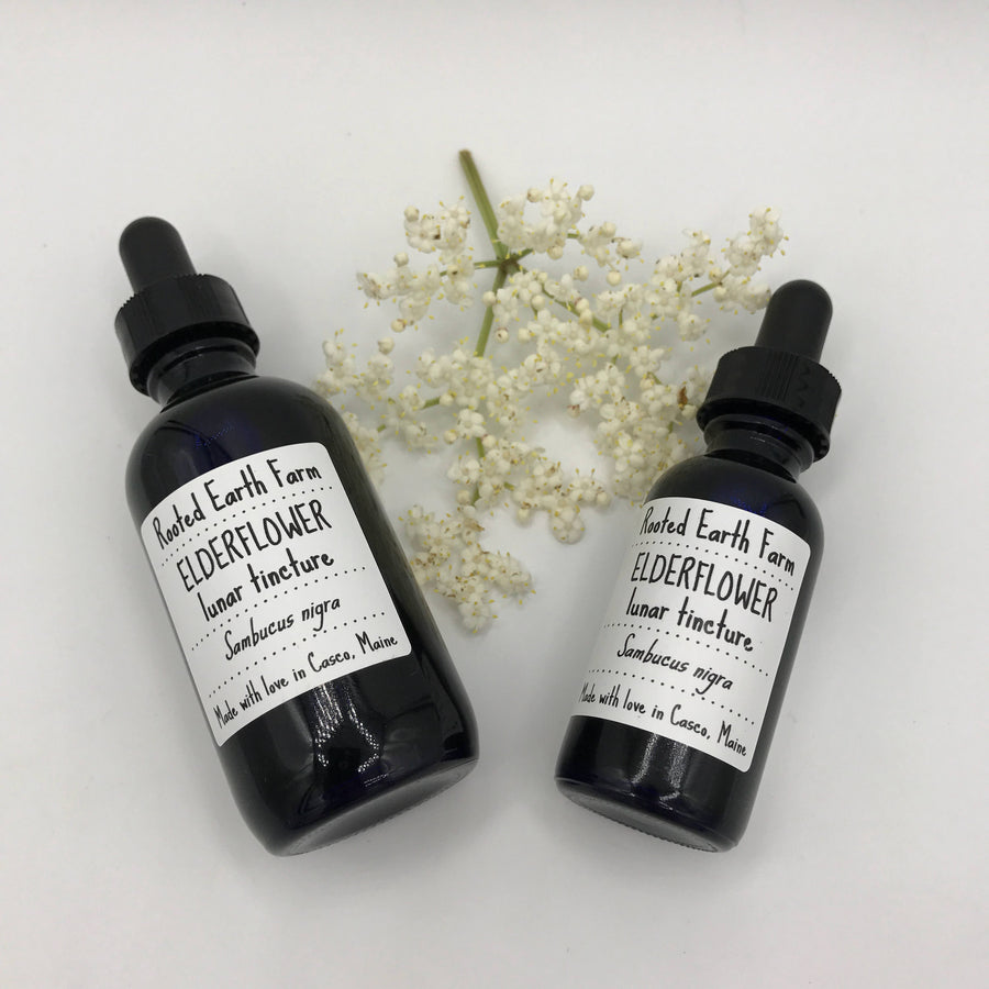 Organic Elderflower Tincture