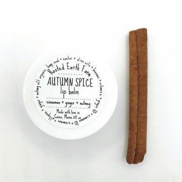 Autumn Spice Lip Balm - Fall Lip Balm - Pumpkin Spice - Herbal Lip Balm - Organic Lip Balm - Natural Lip Gloss - Handmade Lip Balm