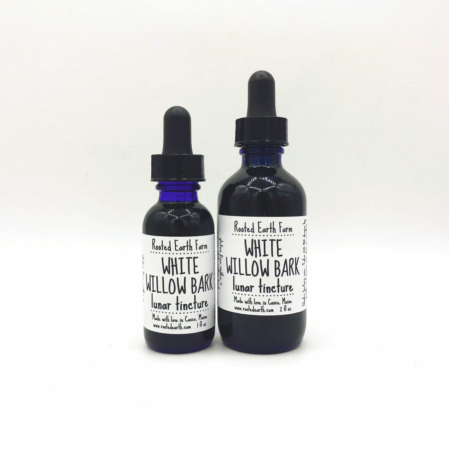 Organic White Willow Bark Tincture