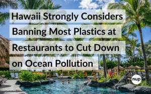 Hawaii strongly considers banning most plastics at restaurants to cut down on ocean pollution