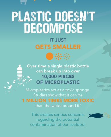 infographic on the dangers of micropalstic