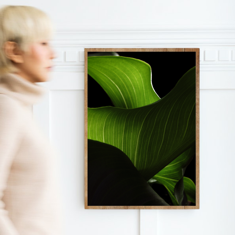 Wall art print of beautiful Calla Lily leaves up close.