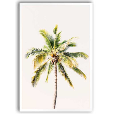 Wall art print of a beautiful coconut tree.