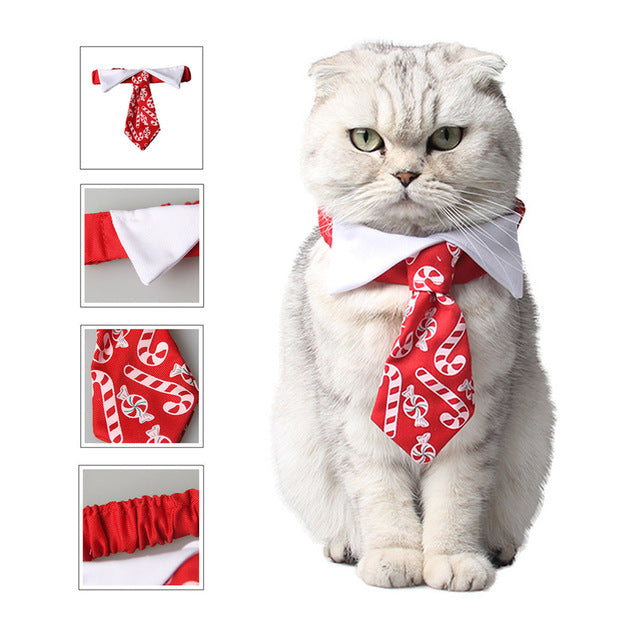 Christmas Pet Tie - Candy Print Bow