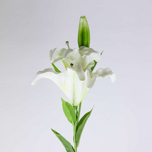 Load image into Gallery viewer, Artificial Deluxe Lily Stem