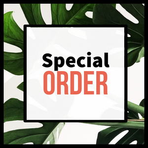Steph - Special Order