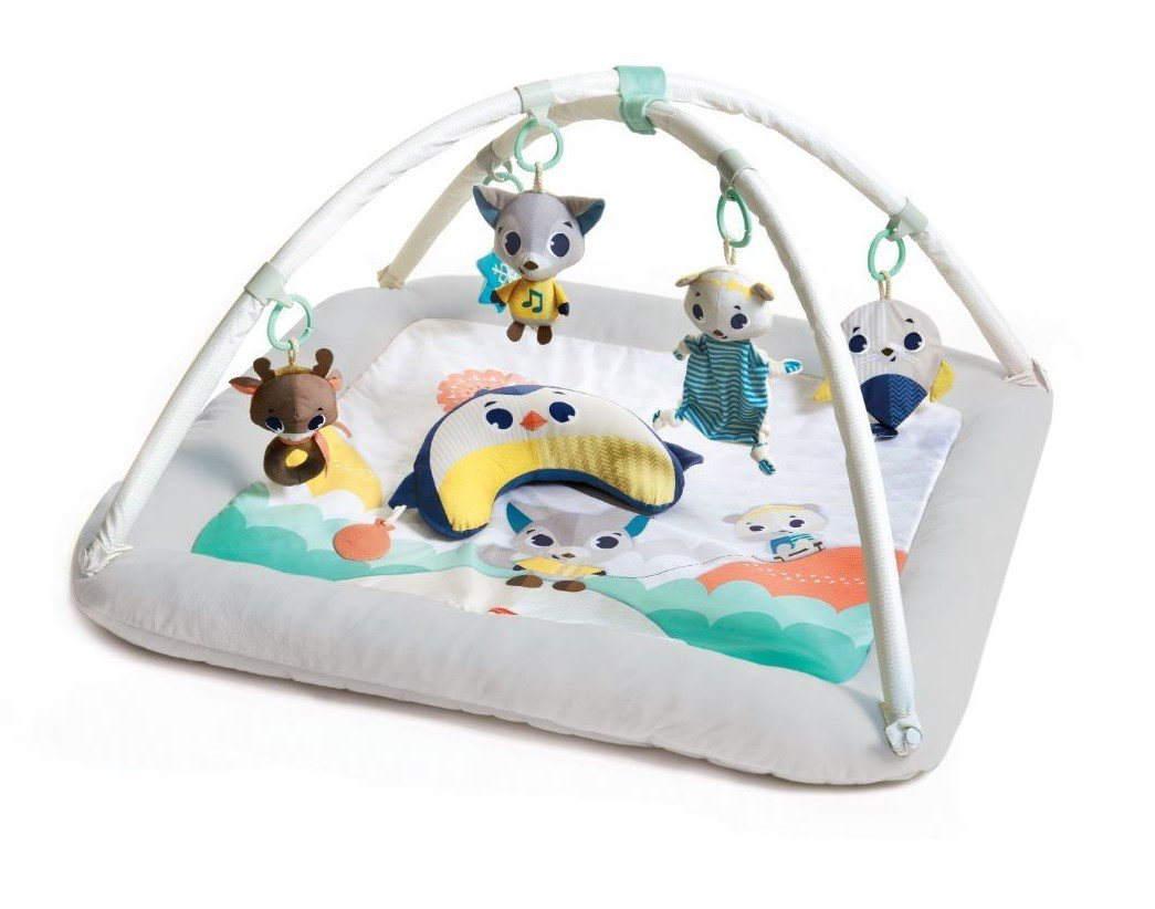 Tiny Love baby gym - Plush Wonders - Tiny Love