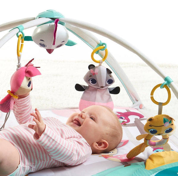 Tiny Love baby gym - Tiny Princess Deluxe - Sold out