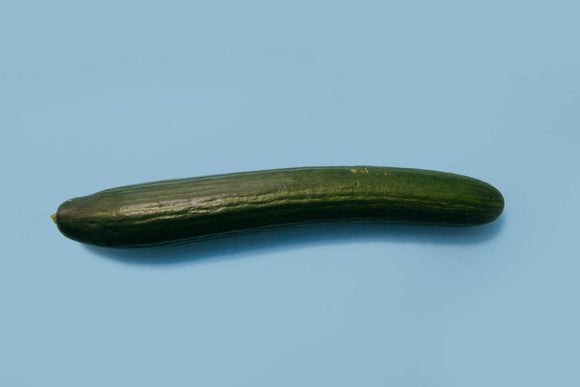 English Cucumber (1 count)