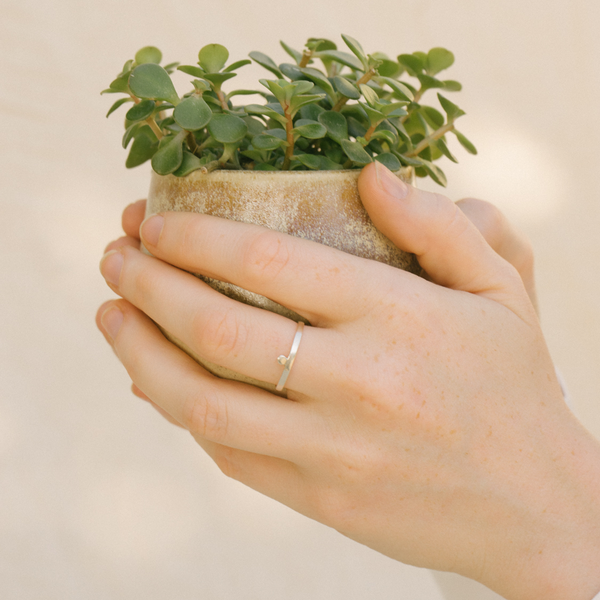 Today jewellery simple dot ring holding planter