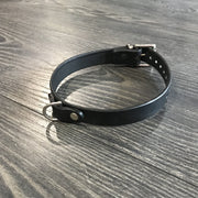 Scandals Leather Collar