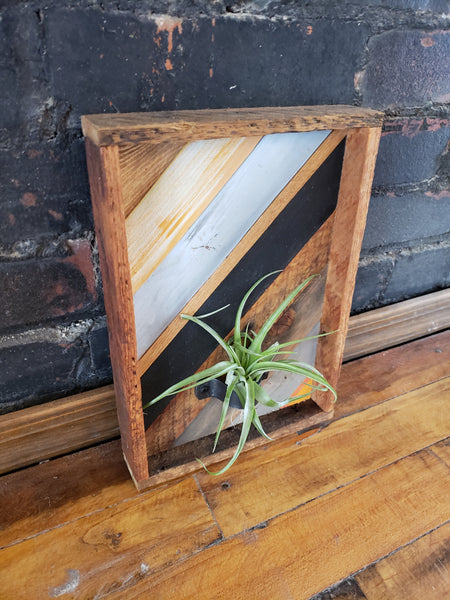 Zero Waste Air Plant Holder