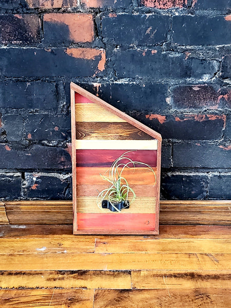 Zero Waste Angled Air Plant Holder