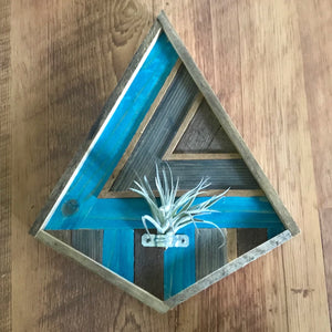 Small Diamond Air Plant Holder