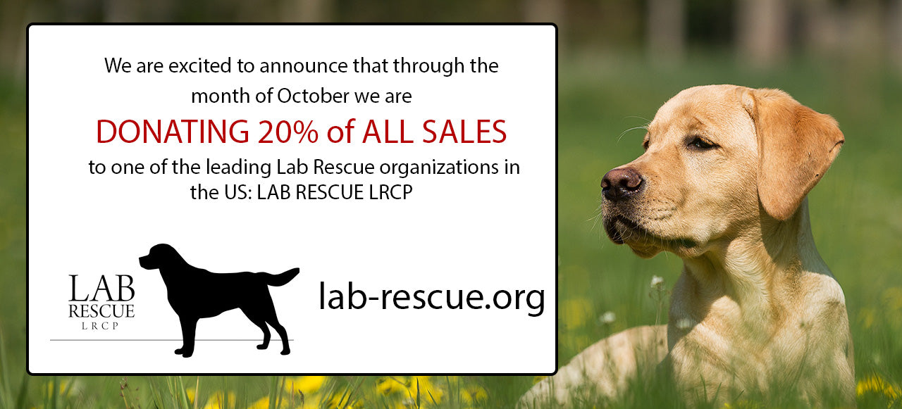 Lab Rescue Donation Initiative