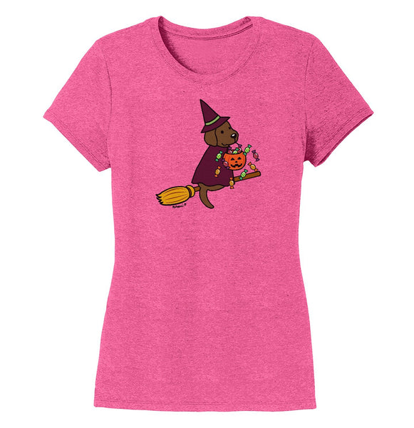 Chocolate Lab Witch - Women's Tri-Blend T-Shirt