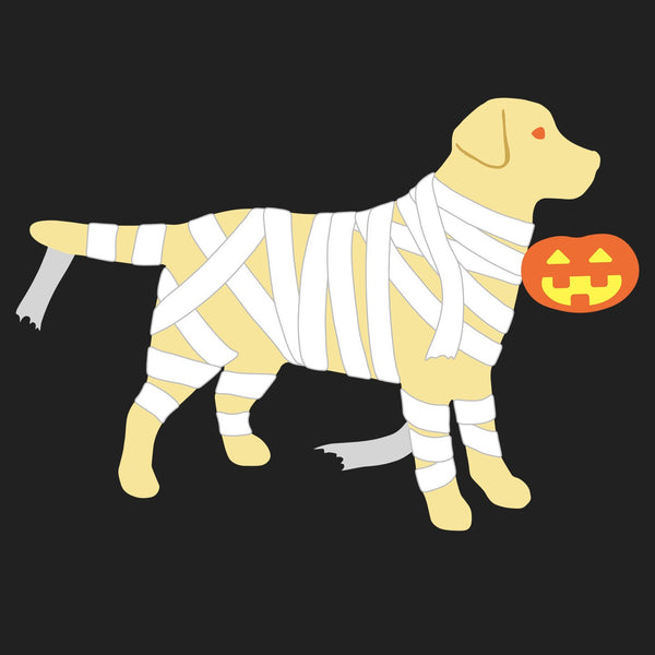 Yellow Lab Mummy Trick or Treater - Women's V-Neck Long Sleeve T-Shirt