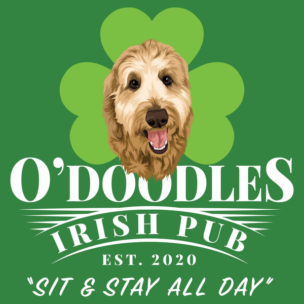 O'Doodles Irish Pub - Women's Fitted T-Shirt