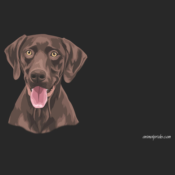 Chocolate Lab Graphic Illustration - Adult Unisex Face Mask