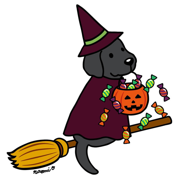 Black Lab Witch - Kids' Unisex T-Shirt