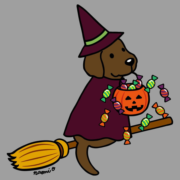 Chocolate Lab Witch - Adult Tri-Blend T-Shirt
