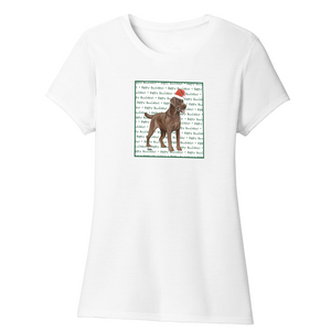 Happy Howlidays - Chocolate Lab - Women's Tri-Blend T-Shirt