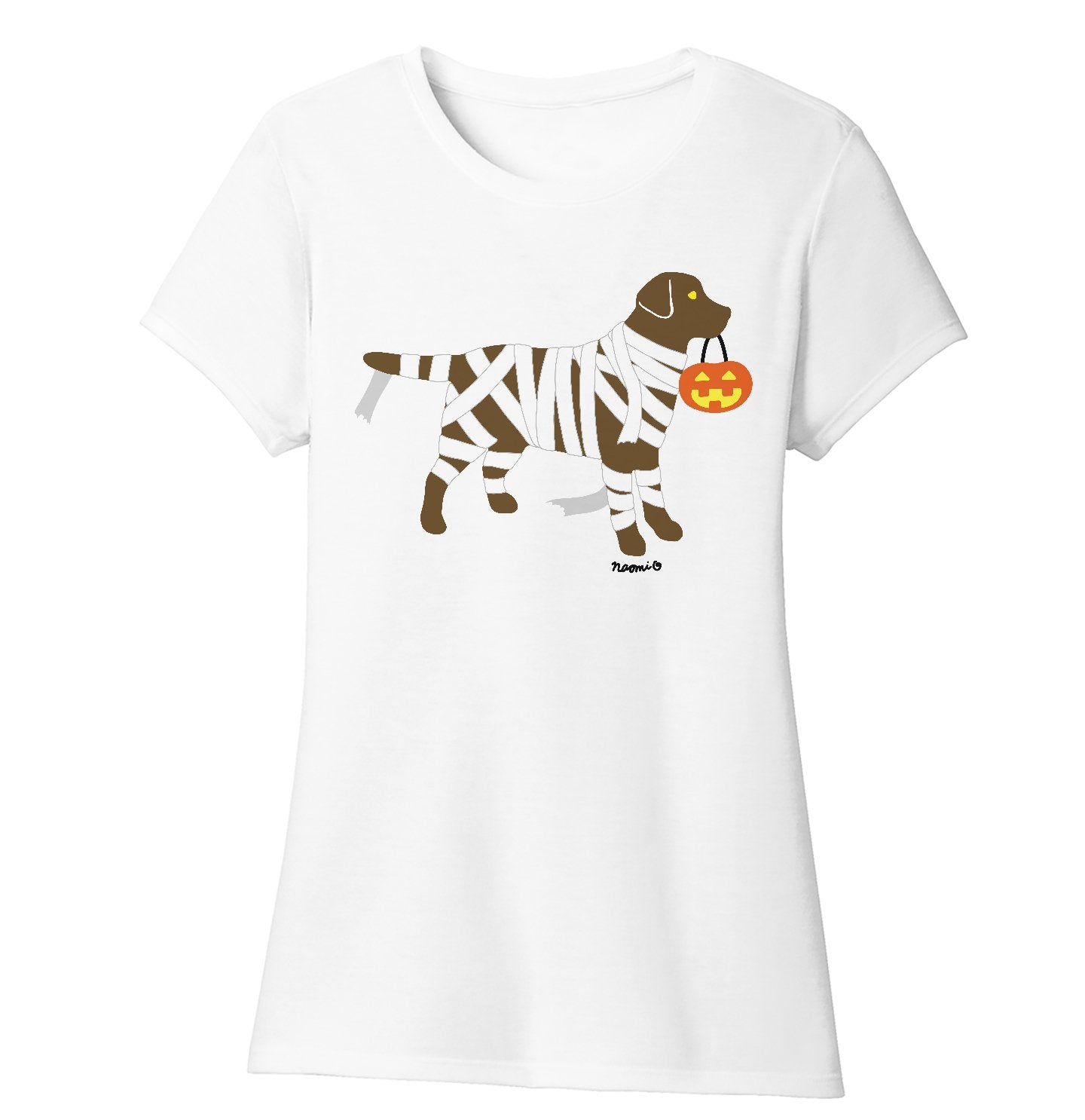 Chocolate Lab Mummy Trick or Treater - Halloween - Women's Tri-Blend T-Shirt