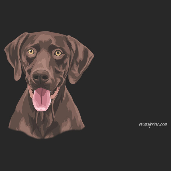 Chocolate Lab Graphic Illustration - Adult Adjustable Face Mask