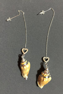 Conch Shell Sterling Silver Earrings 15064