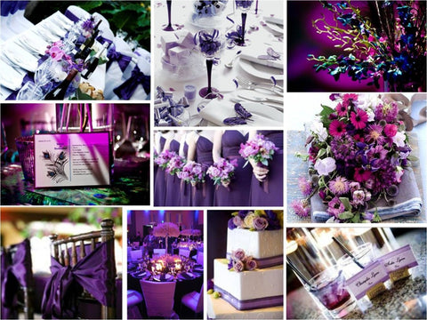 Colors of Wedding Chair Covers