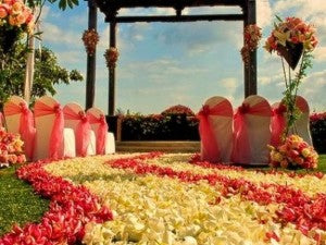 Wedding Garden Chair Covers